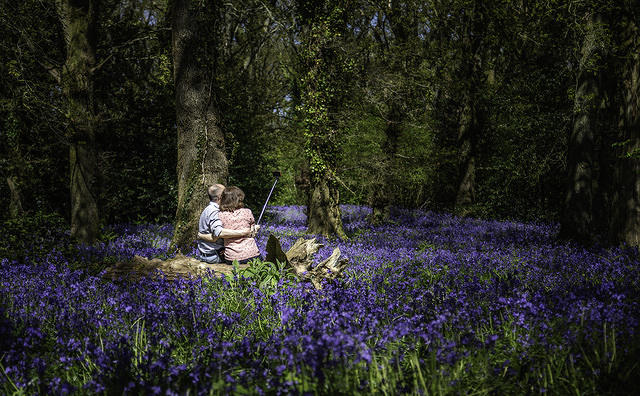 6th. Place - Selfie in the Bluebells - by Stuart Lewis